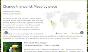 Saving the Rainforest: Piece by Piece